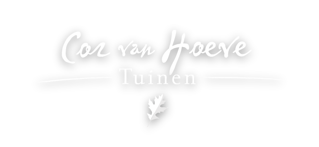Logo.CorvanHoeve.wit-schaduw